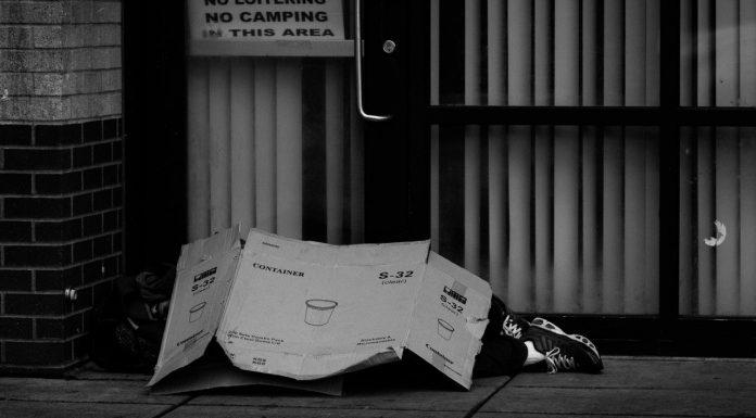 bezdomny bieda
