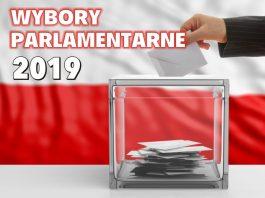 Wybory parlamentarne winieta